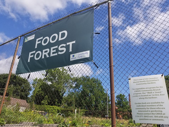 foodforest