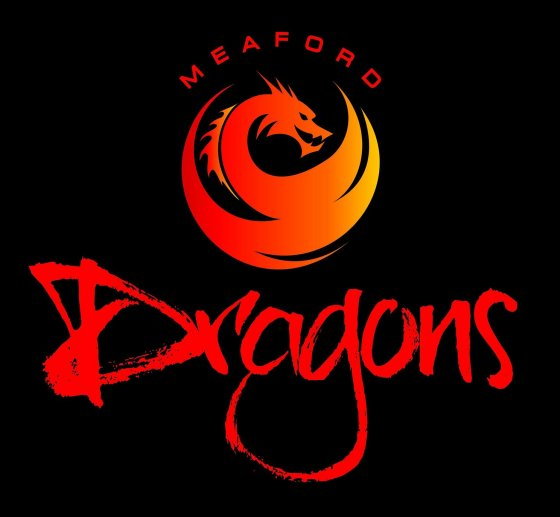 Meaford Dragons