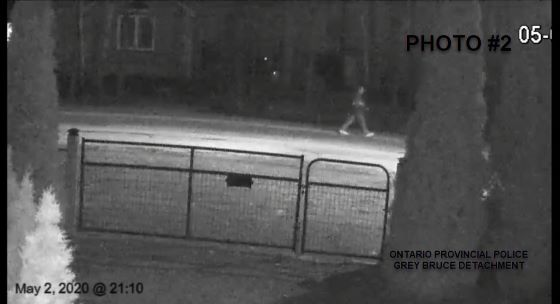 Meaford Person of Interest Photo2